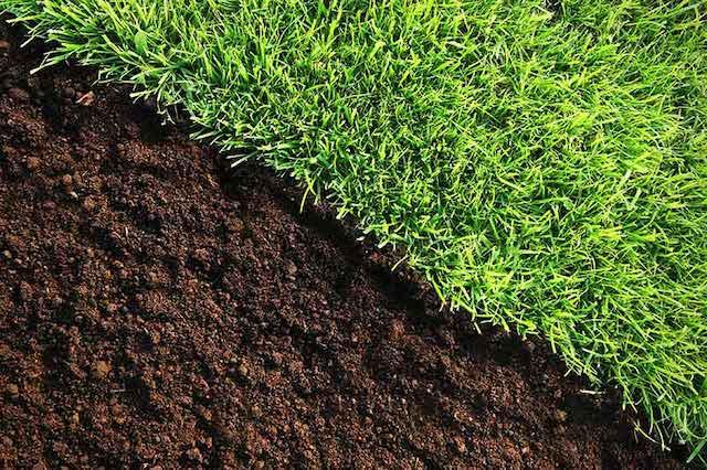 kalken en verbetering van de grond