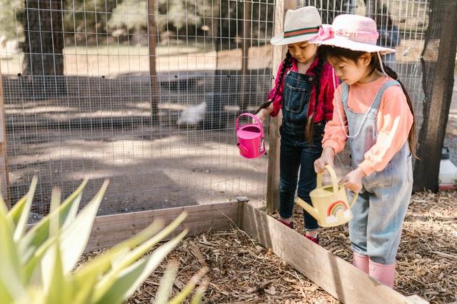 tuinmaterialen te gebruiken bij de renovatie